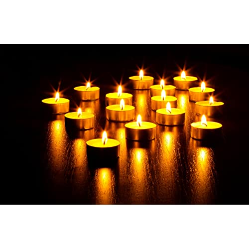 50 Bulk Candles Pack Hyoola Tea Lights Candles European Quality White Unscented Tealight Candles Natural Palm Oil Tea Light 4 Hour Burn Time
